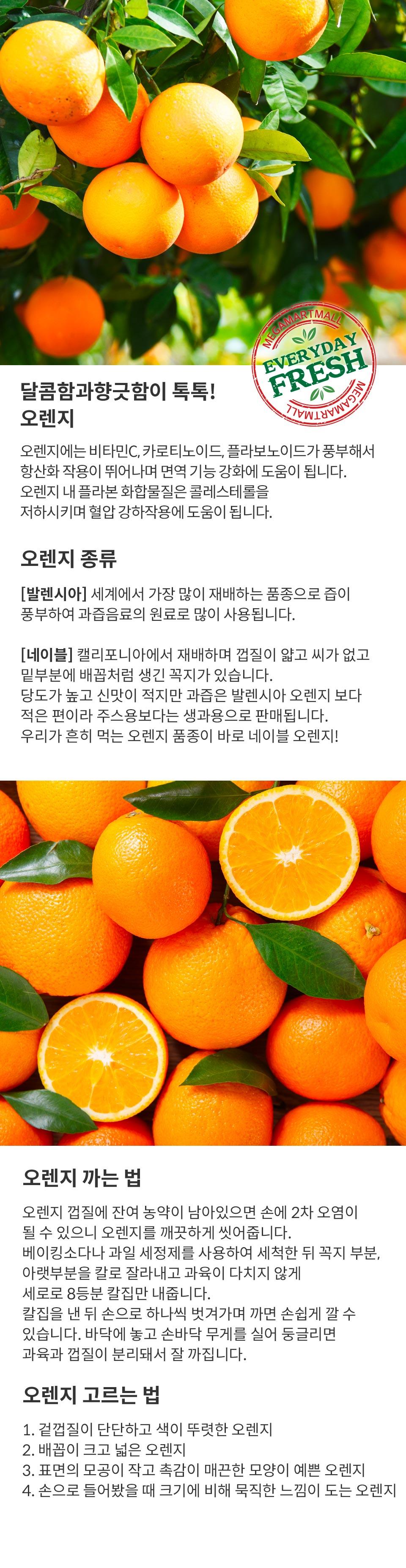 detail_orange.jpg